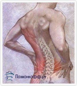 А що якщо у вас дорзальная, форамінальні, парамедіанна або медіанна грижі хребта?