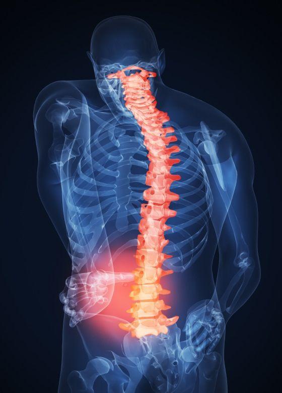 Діагностика і лікування хребта