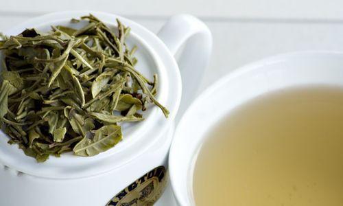 Нирковий чай під час вагітності