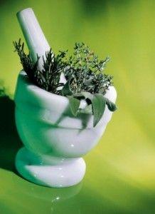 лікування травами