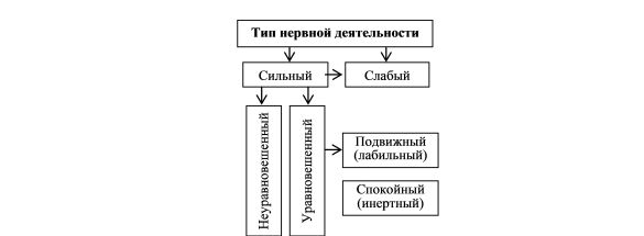 Темперамент і проблеми індивідуальних особливостей людини