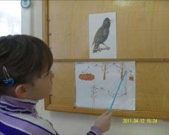 навчальна діяльність дітей з ЗПР